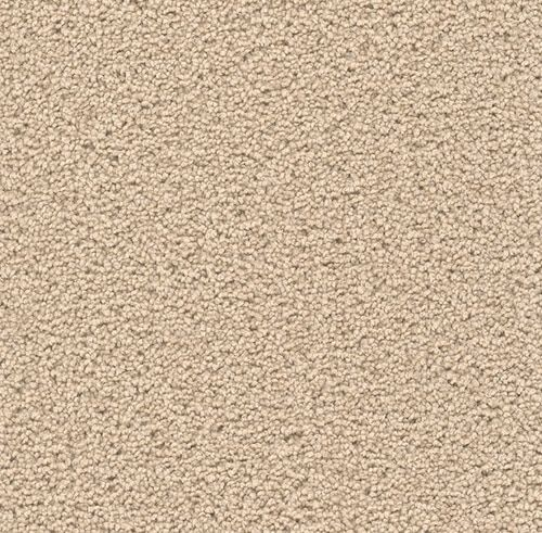 Dream Weaver Exceptional Ii Stair Runner Carpet Carpet Long Carpet Runners