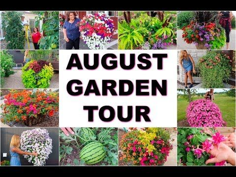 Garden Tour 2018 Casey The Homestead Growers Container