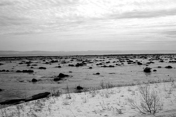 Winter. Quebec, Canada. Photo by Urszula Muntean www.ulaphotography.com  #travel #travelphotography #landscape #landscapephotography #winter #canada