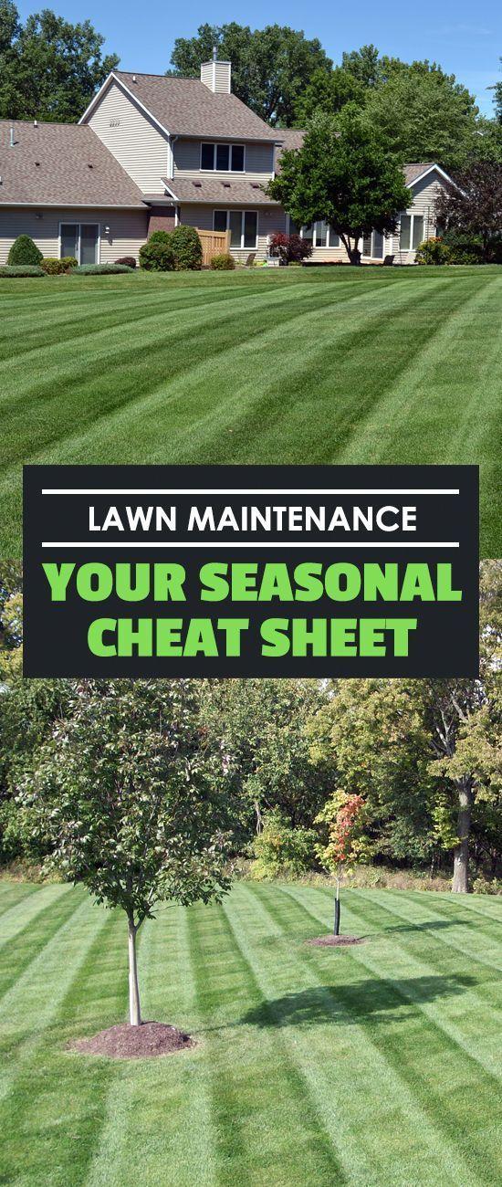 Lawn Maintenance Your Seasonal Cheat Sheet Lawn And Landscape Lawn Maintenance Spring Lawn Care