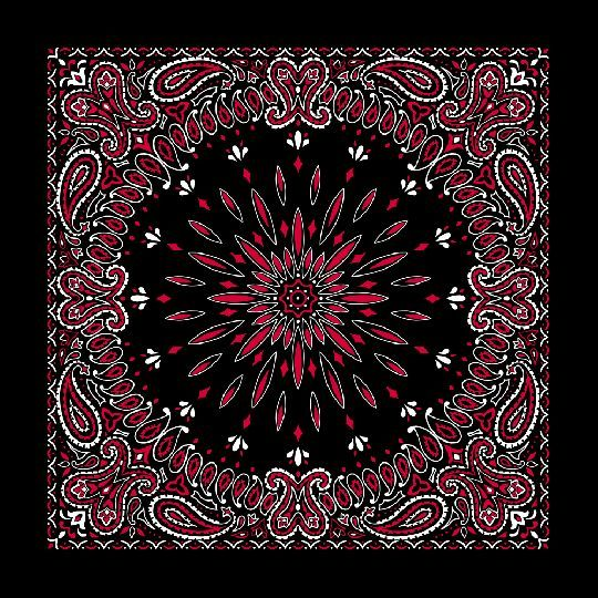 "22/""x22/"" White Paisley Red Roses Black 100/% Cotton Bandana"