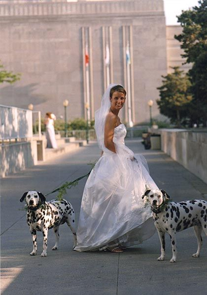 Only wedding ever held at Barney Allis Plaza, Kansas City, Missouri. The Dalmatians were darling.
