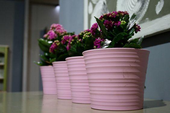 46ª Capital do Móvel - Feira de Mobiliário e Decoração | Furniture and Decoration Fair  Paços de Ferreira | Porto | Portugal    Design e Inovação | Design and Inovation   Vasos de flores | Flowers