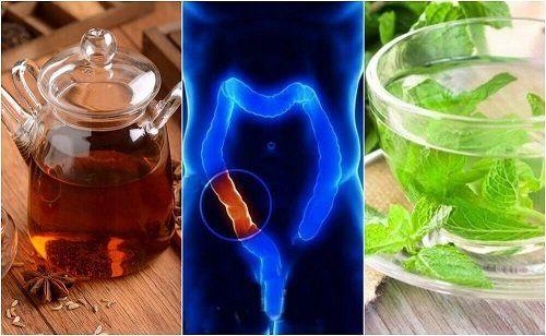 beneficii pentru sănătate ale pierderii în greutate de kombucha)