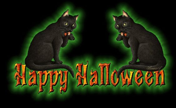 ani+halloween,+black+cat+says+happy+halloween.gif (854×524)