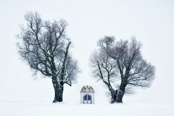 Brothers Grimm-inspired photos by Kilian Schönberger reveal haunting fairytale worlds
