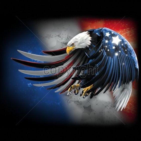 American Bald Eagle USA Wings Men V-Neck US Flag Patriotic Shirts