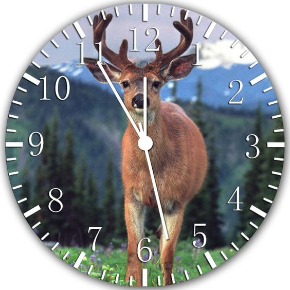 New Deer Buck Huge X-Large size wall clock 14 Room Decor A337 Fast shipping. $19.49, via Etsy.