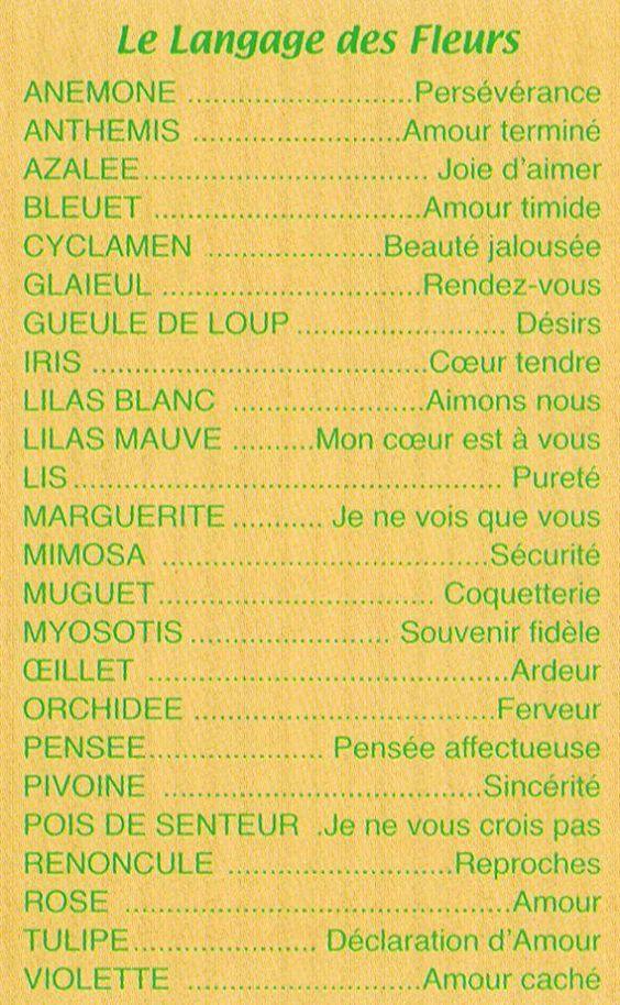 Le langage des fleurs - Langage des fleurs amitie ...