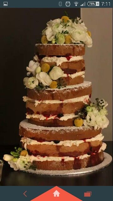 Regnier cakes - naked sponge