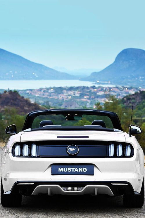 Ford Mustang Ecoboost Convertible (#FTA)Is this what heaven looks like?