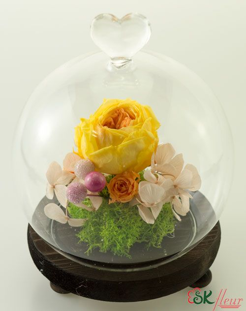 Where To Buy Preserved Flowers In Singapore