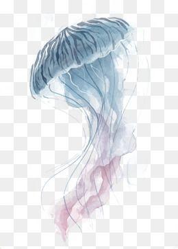 Vector Jellyfish Jellyfish Design Jellyfish Print Watercolor Pattern