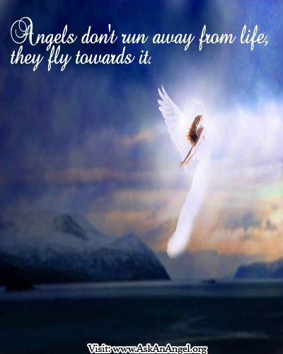 Quotes About Running Away From Life: Angels Don't Run Away From Life, They Fly Towards It ^i