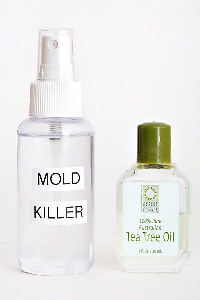 Mix 1 teaspoon of tea tree oil per 1 cup of water.  Spray onto the surface with mold or Mildew & allow to dry, do not rinse.  This will kill the mold spores without creating harsh chemical fumes as other cleaners, such as bleach, would.