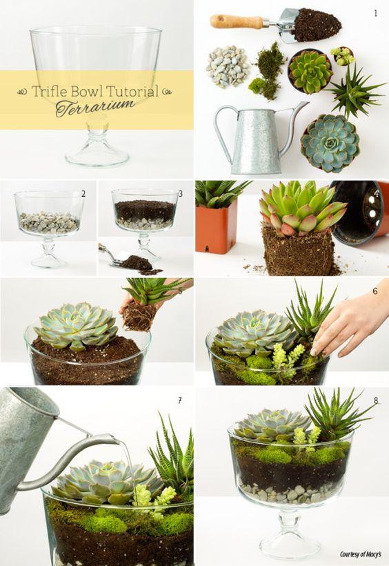 4 ideas originales para hacer con un bol de vidrio - Macetas originales para plantas ...