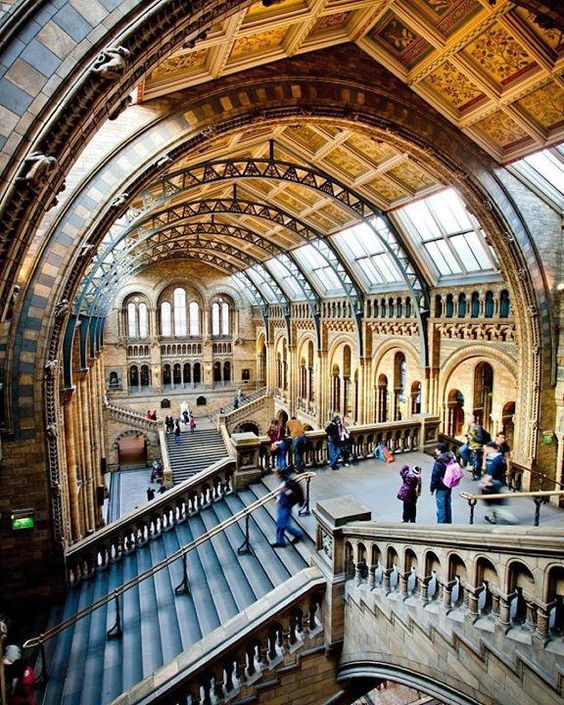 @Natural_History_Museum in #London is a #TravelersChoice Museums winner this year! Tag who you'd take with you to explore it or someone you've already explored it with! Hotels-live.com via https://instagram.com/p/8F6acgEgZM/