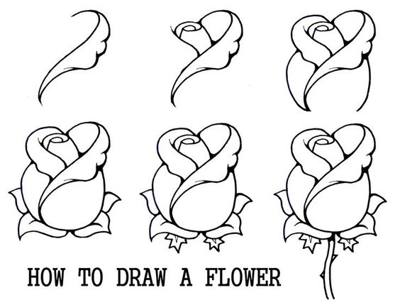 Tips: How to Draw a Rose Step by Step for Beginners - Art Designs ...