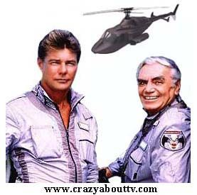 """Stringfellow Hawke (Jan-Michael Vincent) Dominic Santinie (Ernest Borgnine)  Airwolf was an hour action series on CBS then on the USA Network for its final season. It was about a maverick pilot who made a deal with a covert U.S. agency called, """"The Firm."""" If they would help him find his brother who was missing in Vietnam, he would operate their high-tech helicopter on dangerous missions for them.  The helicopter used  was a modified """"Bell 222""""."""