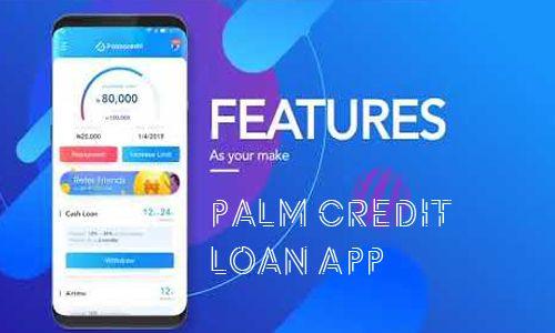 Image result for palm credit image