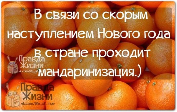 Прикольные фразочки в картинках №271214 » RadioNetPlus.ru развлекательный портал