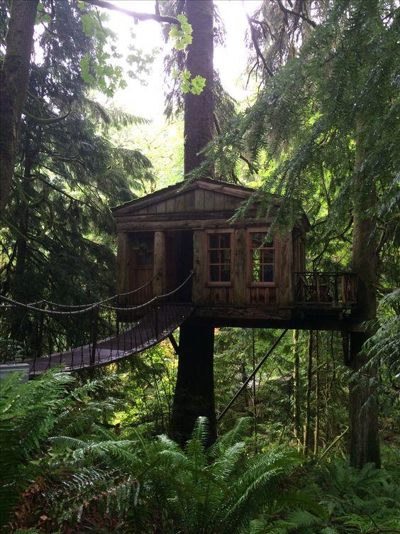 Treehouse Point Fall City Part - 48: Treehouse Point, Fall City WA