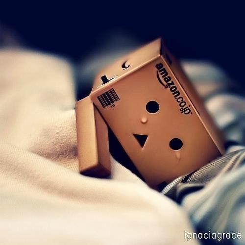 Danbo crying ( cute but sad )    :-(