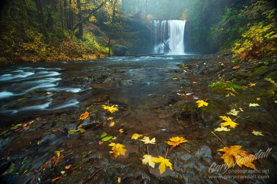 A Misty Autumn Falls by Gary Randall on 500px
