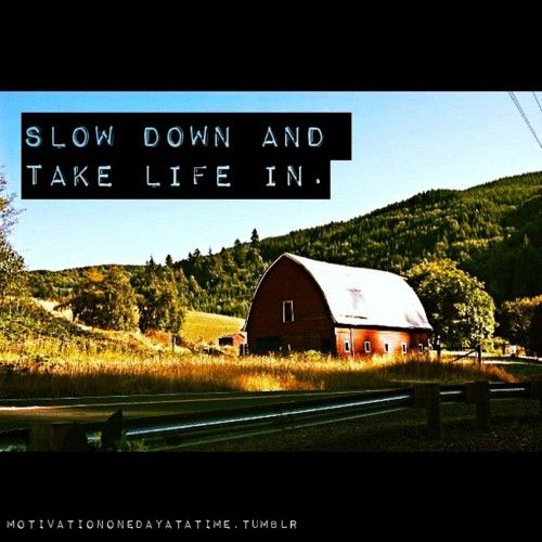 Slow down and take life in. #quotes