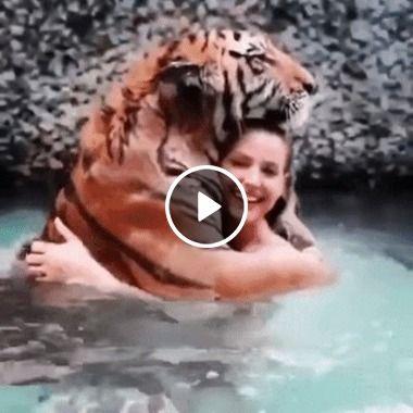 Ela não quis ser amiga da onça, mas sim amiga do Tigre kkkkk