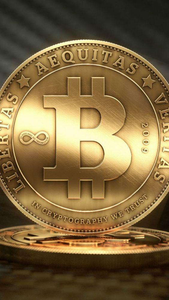 Stocker bitcoins news gavle goat betting