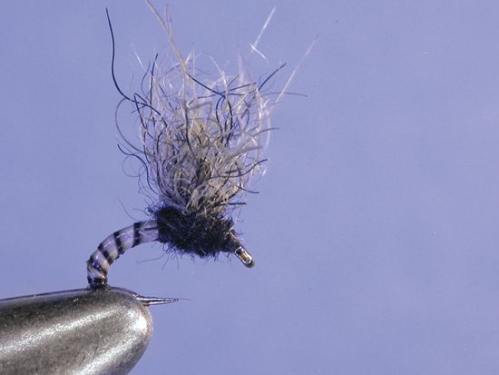 Fly fishing fishing and suspenders on pinterest for Midge fly fishing