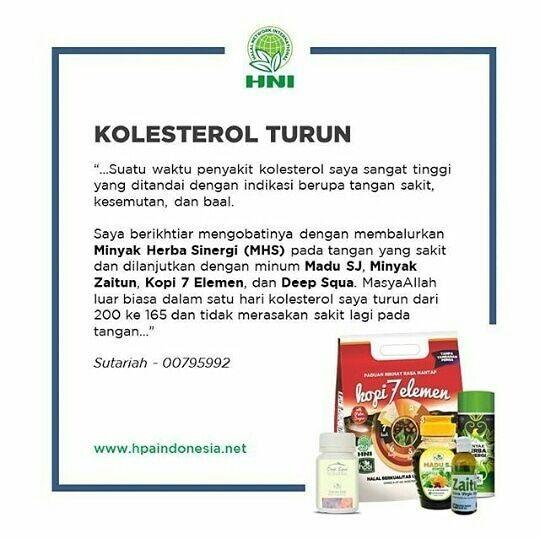 Kolesterol Herba Herbal Minyak Zaitun