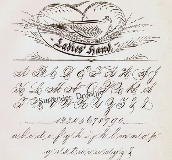 Ladies hand ornamental pen flourishing palmer method