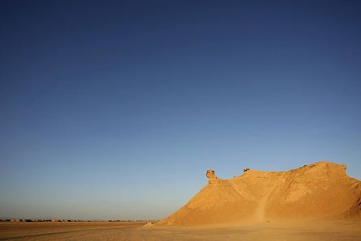 L'oasis de Tozeur, véritable ville-symbole du Grand Sud Tunisien. C'est la principale porte d'entrée du Sahara ! - #easyvoyage #easyvoyageurs #clubeasyvoyage #terresdevoyages #travel #traveler #traveling #travellovers #voyage #voyageur #holiday #holidaytravel #tourism #tourisme #tunisie #tunisia #oasis #oasisdetozeur #tozeur #sahara