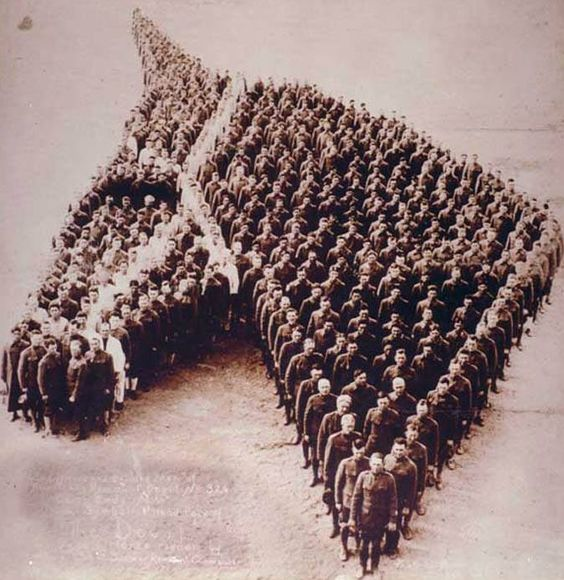 Poignant picture shows touching tribute to the eight million horses who died in the First World War.: