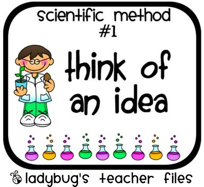 Here is a nice set of signs on the steps in one approach to a scientific method.