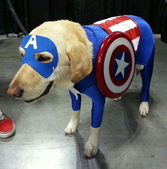 Let Freedom Ring With Awesome And Impressive Captain America Cosplay «