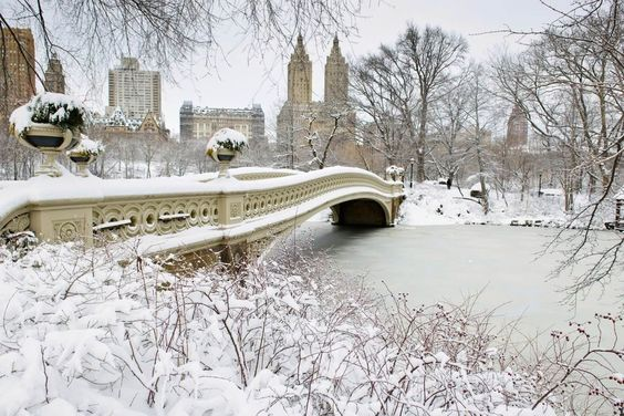 Explore Central Park in Winter - New York - USA | Qantas Travel Insider