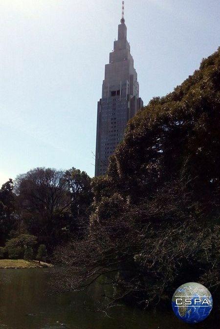 Morning in the park in Tokyo, Japan. Photo by Karolina Bober. #tokyo #tokio #japan #japonia #azja #asia #cspa #bober #asian #japanese #2016 #spring #wiosna #nature #natura #wiśnia #travel #podróż #risefilter #park #morning #poranek #wschód #skyscraper #wieżowiec