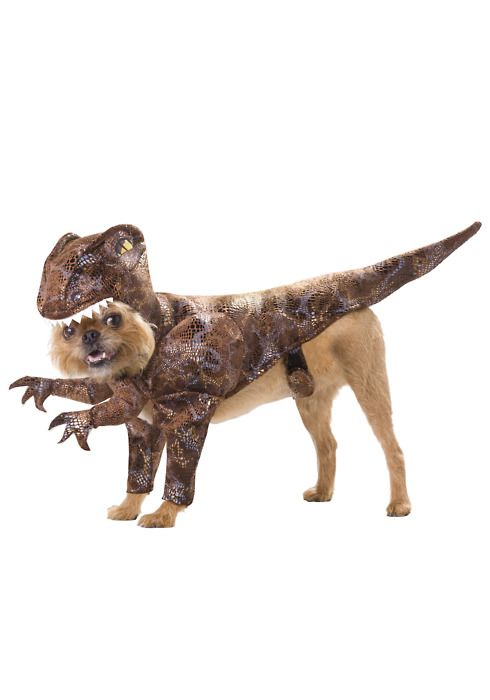 """Is this a """"Jurassic Park"""" inspired raptor?"""