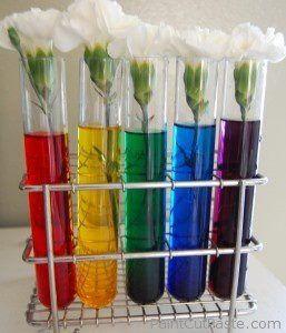 Experimento para clase, con agua y color alimenticio. Hay que esperar hasta que los claveles cambien de color. Es asombroso para los niños.