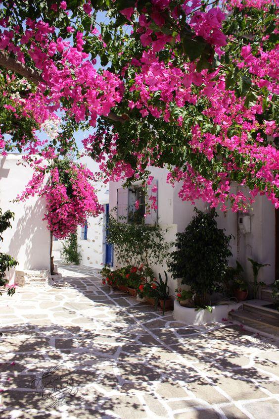 vacances Prodromos, Paros, Cyclades, Grèce