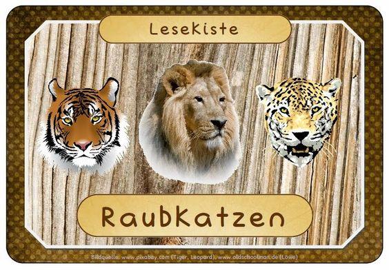 """Endlich Pause?!: Lesedosen """"Wüste"""" und """"Raubkatzen"""""""