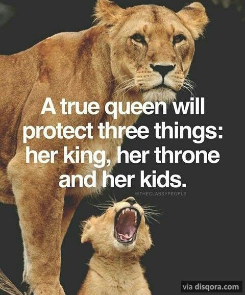 36 Best Inspirational Quotes To Inspire You My King Quotes Lion Quotes Lioness Quotes