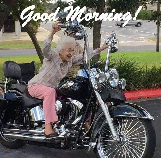 Good Morning Fellow Bikers Harleytherapy Windtherapy Ftw Sundaymotivation Followyourdreams Nofear Noregrets Harley Davidson Motorcycle Funny Pictures