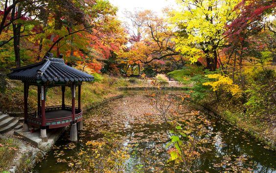 Khu vườn Huwon tại cung điện Changdeokgung