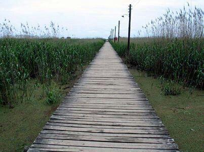 Wooden bridge to the caspian sea. Kiashahr.gilan.Iran