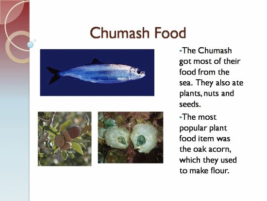 Chumash food 3rd grade chumash indians diorama project for American cuisine facts