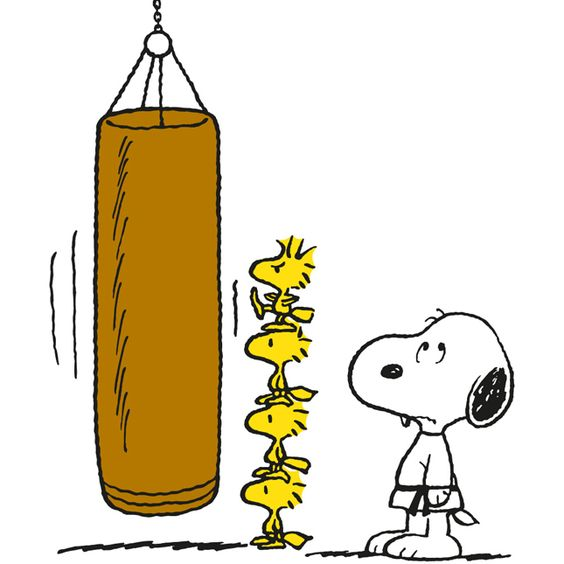 Snoopy, Punching bag and Snoopy and woodstock on Pinterest